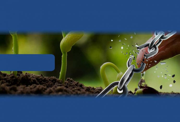 Sibonelo Savings And Credit Co-Operative Society